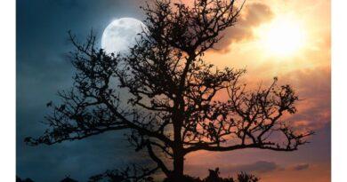 Сказка про луну и солнце для детей — читать онлайн