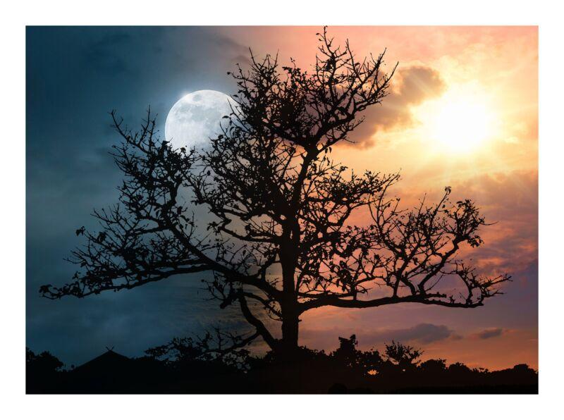 Сказка про луну