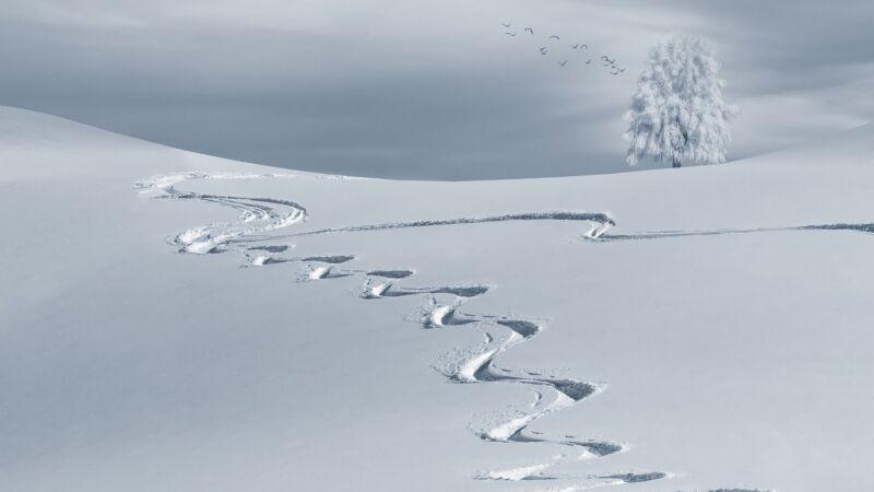 Сказка про первый снег
